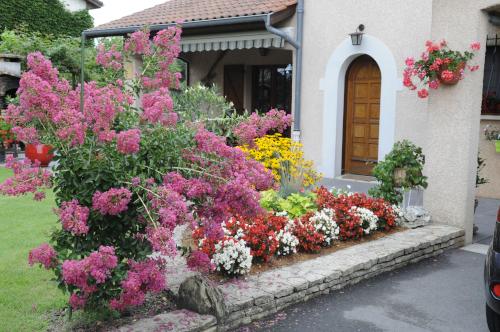 fleurs 038.JPG